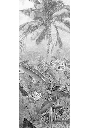 KOMAR Vliestapete »Amazonia Black« kaufen