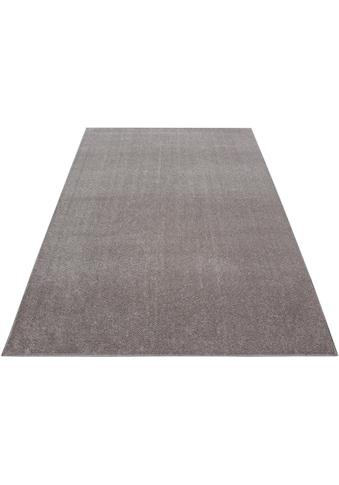 Teppich, »ATA«, Ayyildiz, rechteckig, Höhe 10 mm, maschinell gewebt kaufen