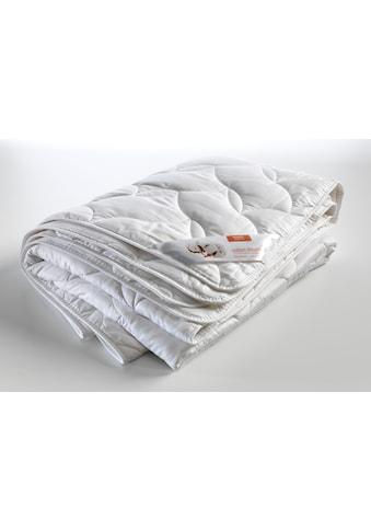 Kyburz Einziehdecke »Ranke«, Füllung 100% Baumwoll Flies, Bezug 100% Baumwoll-Edelsatin sanforisiert, (1 St.) kaufen