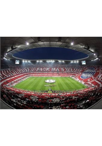 Wall-Art Fototapete »Bayern München Stadion Choreo Pack Mas« kaufen