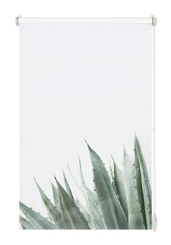 Seitenzugrollo »EASYFIX Rollo Dekor Agave«, GARDINIA, Lichtschutz, ohne Bohren kaufen