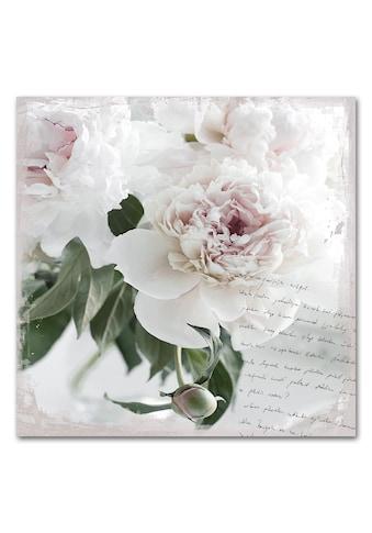 Acrylglasbild »Poesie&Rose«, 50x50cm kaufen
