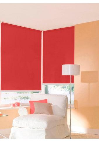 sunlines Seitenzugrollo »One size Style uni«, Lichtschutz, ohne Bohren, freihängend,... kaufen
