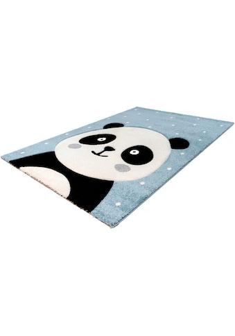 Kinderteppich, »Amigo 322«, LALEE, rechteckig, Höhe 15 mm, maschinell gewebt kaufen