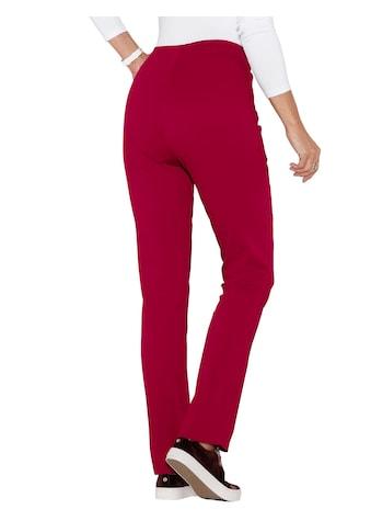 Classic Basics Jeans mit geradem Schnitt kaufen