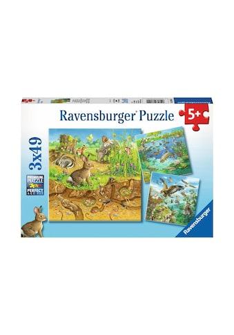 Ravensburger Puzzle »Tiere in ihren Lebensräumen« kaufen
