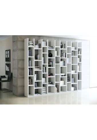 fif möbel Raumteilerregal »TOR166«, Breite 272 cm kaufen