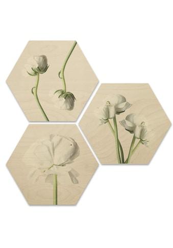 Wall-Art Mehrteilige Bilder »Maiglöckchen Blumen Collage«, (Set, 3 St.) kaufen