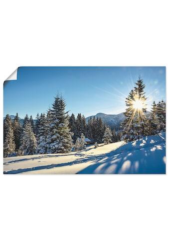 Artland Wandbild »Winterlandschaft mit Sonnenstern« kaufen