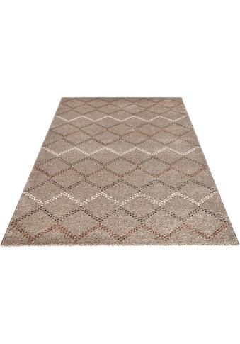 Teppich, »Nouveau«, MINT RUGS, rechteckig, Höhe 20 mm kaufen