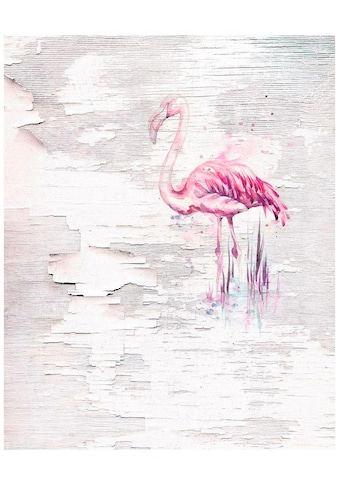 KOMAR Vliestapete »Pink Flamingo« kaufen