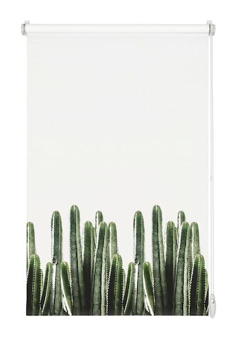 GARDINIA Seitenzugrollo »EASYFIX Rollo Dekor Kaktus«, Lichtschutz, ohne Bohren kaufen