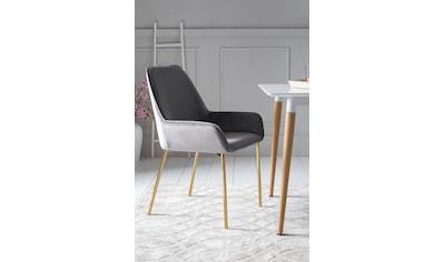 SalesFever Armlehnstuhl, mit modernem, messingfarbenem Gestell kaufen