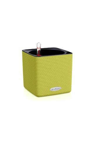 Blumentopf, Lechuza, »Cube Color 14 Grün« kaufen