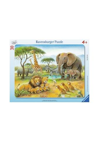Ravensburger Puzzle »Afrikas Tierwelt« kaufen