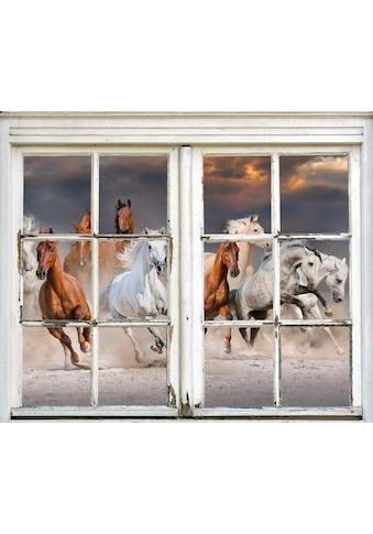 queence Wandsticker »Pferde« kaufen
