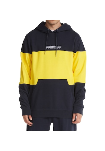 DC Shoes Hoodie »Downing« kaufen