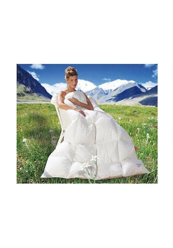 Balette Daunenbettdecke »Weiss & Edel«, Füllung neue reine Entendaunen 90%, Bezug 100% Baumwolle Cambric Soft, (1 St.) kaufen