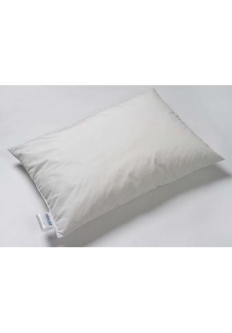 Kissen/Pfulmen, Kyburz, »Clean Silver« kaufen