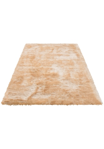 my home Hochflor-Teppich »Mikro Soft Super«, rechteckig, 50 mm Höhe, Besonders weich durch Microfaser, extra flauschig, Wohnzimmer kaufen