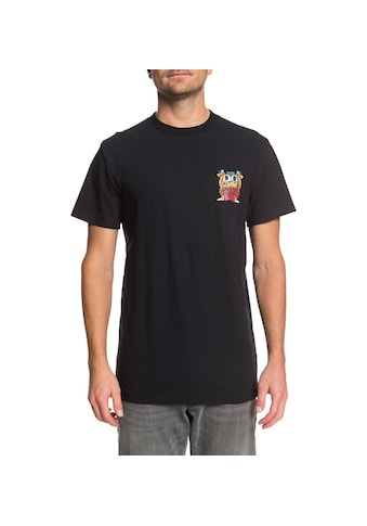 DC Shoes T - Shirt »Strikes Again« kaufen