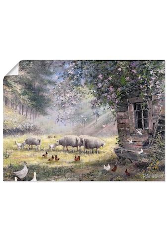 Artland Wandbild »Hühner und Schafe«, Haustiere, (1 St.), in vielen Grössen &... kaufen