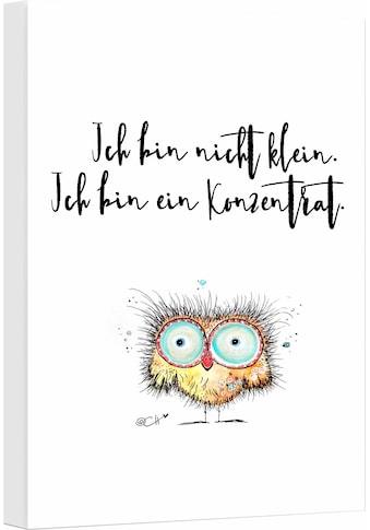 Wall-Art Leinwandbild »Hagenmeyer - Ich bin nicht klein…«, 30/45 cm kaufen