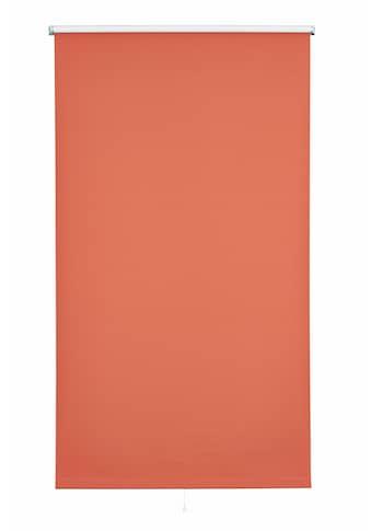 sunlines Springrollo »Uni«, verdunkelnd, mit Bohren, 1 Stück kaufen