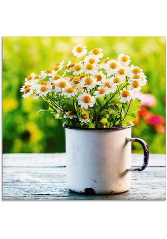 Artland Glasbild »Frühlingsgarten mit Gänseblümchen«, Blumen, (1 St.) kaufen